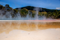 Lady Knox Geyser Rotorua - North Island New Zealand